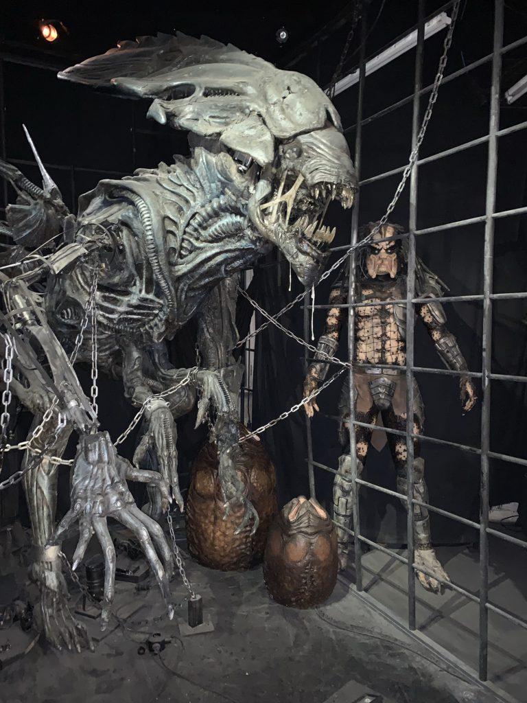 Alien V Preditor