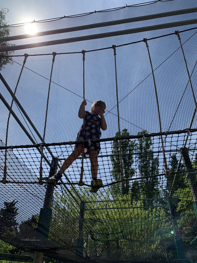Olivia doing high ropes at Touroparc Zoo